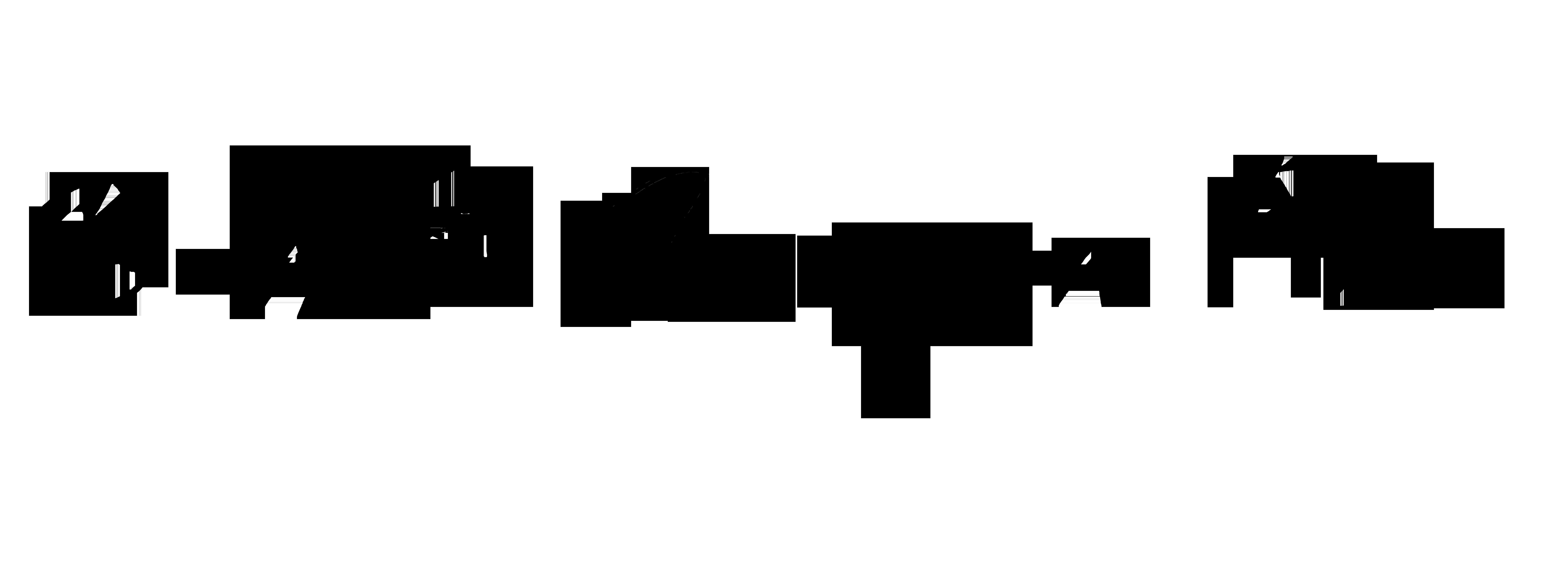 Bartók Csongor Film fekete